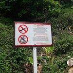Φωτογραφία: Monkey Trail