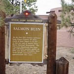 Photo of Salmon Ruins