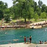 Foto di Barton Springs Pool
