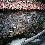 Foto di Refugio de Verdes