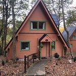 Entrance - Finlake Holiday Park Photo