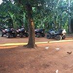 Ảnh về Quad Zanzibar Tour