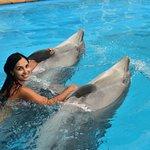 Odessa Delphinarium Nemoの写真