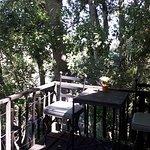 Kardouw Country Retreat - Tree Tops – kuva