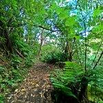 Explore Nature Image