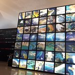 Photo of Museum of Tomorrow