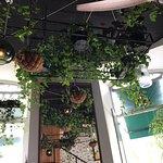 Foto di Cafe Janis