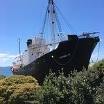 Albany's Historic Whaling Station의 사진