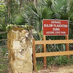 Bulow Plantation Ruins Historic State Park-billede