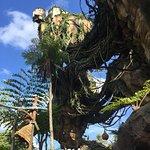 Foto de Pandora – The World of Avatar