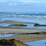 Photo de St Andrews West Sands Beach