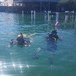 Bocas Diving Pirates