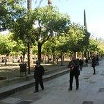 Foto van Patio de los Naranjos