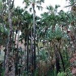 Photo of El Questro Wilderness Park