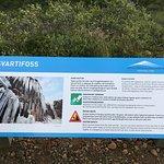 Φωτογραφία: Svartifoss Waterfall
