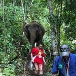 Blue Elephant Thailand Tours Foto