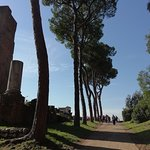 Terme di Caracalla Foto