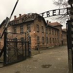 Фотография Государственный музей Аушвиц-Биркенау