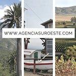 Valparaíso, Viña del Mar, Santiago, Cajon del Maipo, Viñedos, cordillera, mar y mucho más.