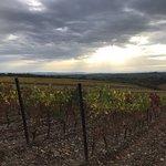 Vineria San Felice fényképe