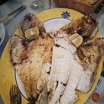 Turkish House Restaurant Foto