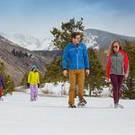10K of Scenic Snowshoe Trails