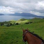 Foto Horse Trekking Lake Okareka