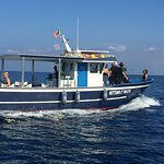 Calabria Sport Fishing Foto