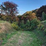 Foto di Nagurumi Castle Ruins