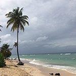 Pigeon Point Beach照片
