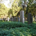 Photo of Central Cemetery (Zentralfriedhof)