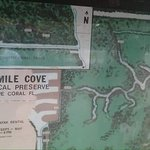 Four Mile Cove Ecological Preserve Foto