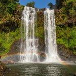 Foto de Bolaven Plateau Waterfalls