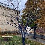 Foto di Currier Museum of Art