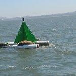 Forth Boat Toursの写真