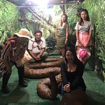 Bohol Python and Wildlife Park Foto