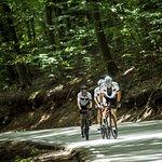 Bilde fra Montefusco Cycling