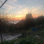 Genova Guide Tours Foto