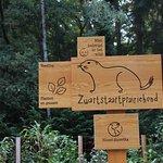 mooie info borden voor de dieren