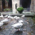Foto de Barcelona Cathedral
