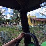 Zdjęcie Ultimate Cozumel Island Buggy Tour