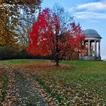 Фотография Petworth House and Park