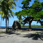 Pu'uhonua O Honaunau National Historical Park صورة فوتوغرافية