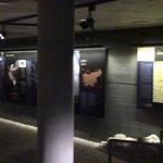 Pokrajinski muzej Celje Foto