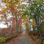 Rachel Carson National Wildlife Refuge in the fall