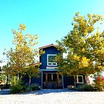 Lone Madrone Winery Foto