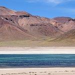 Foto de Lagunas Altiplanicas