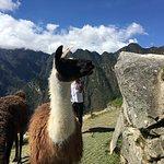 Φωτογραφία: Best Peru Tours