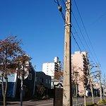 Oldest Telegraph Pole Photo