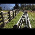 Bilde fra Alpine Coaster
